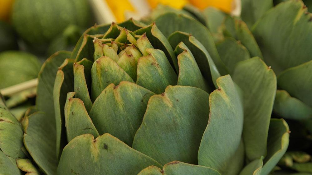 forma-e-gusto-francesca-marino-nutrizionista-carciofi-alleato-fegato-antidoto-invecchiamento
