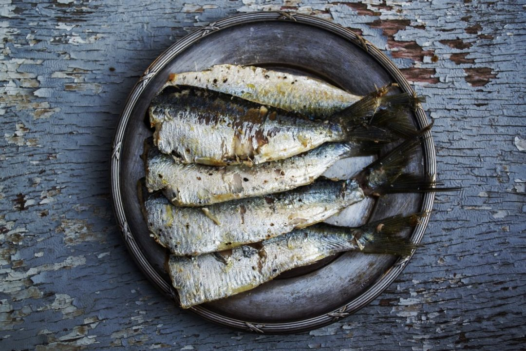 Forma e Gusto - Il pesce